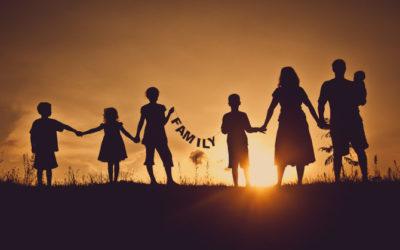 Vida Nova com a Constelação Familiar!